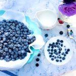 ネイティブアメリカン発祥「ブルーベリー」の収穫期を満喫
