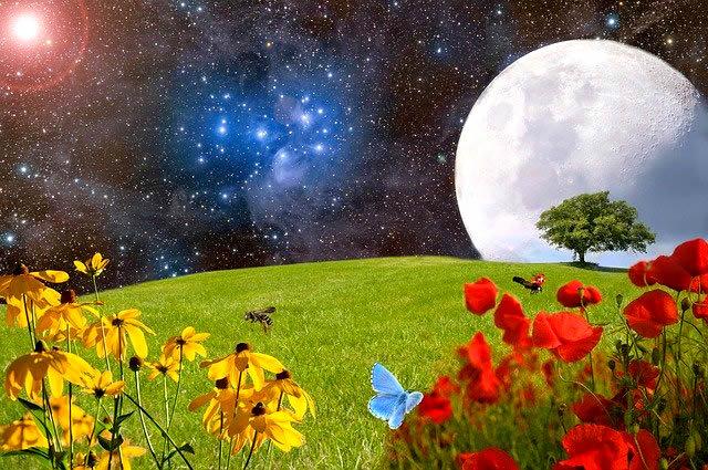 本格的なスターウオッチングで壮大な宇宙に目覚めよう